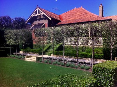 Lindfield - Sydney Harbour Gardens